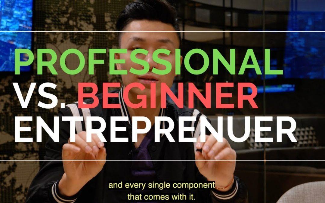Professional vs. Beginner Entrepreneur